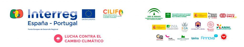 Interreg cilifo